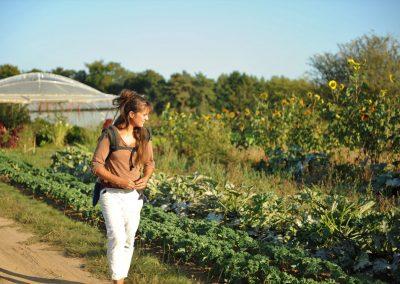 Les Légumes de Prouvy s'enracinent