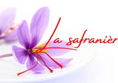 Le safran , or rouge de Chimay