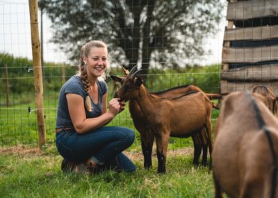 Un abri en bois pour mes chèvres laitières